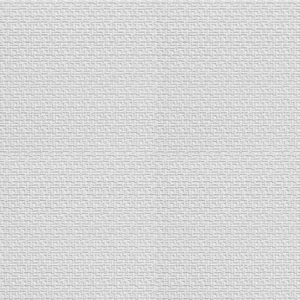 Superbe Boland Textured Paintable Wallpaper White (RD0901)