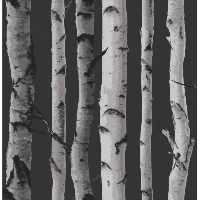 Fine Decor Birch Tree Wallpaper Black / Grey (FD31052)