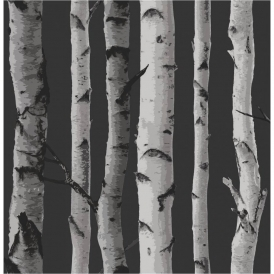 Birch Tree Wallpaper Black Grey