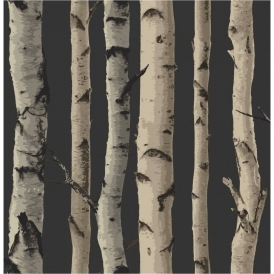 Birch Tree Wallpaper Gold Brown