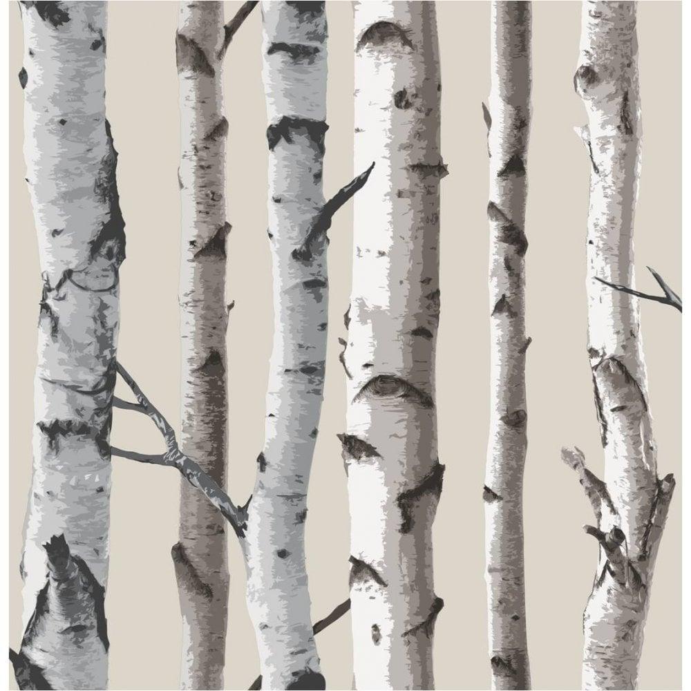 Two Become One Decorative Trees: Fine Decor Birch Tree Wallpaper Natural Beige, Cream