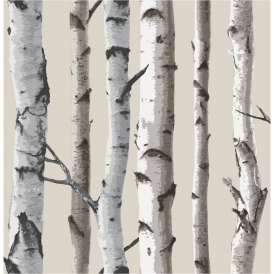 Birch Tree Wallpaper Natural Beige, Cream (FD31051)