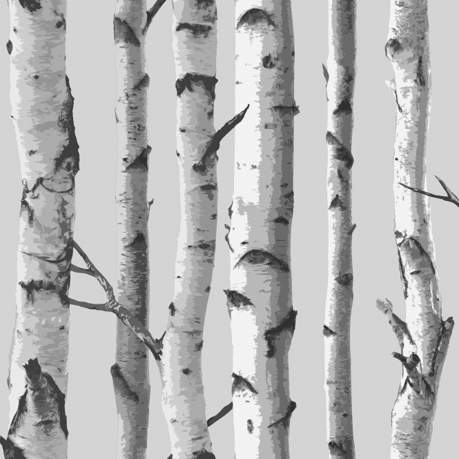 I Love Wallpaper Birch Tree Wallpaper Soft Grey / White (ILW980070)