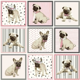 Boris The Dog Wallpaper Grey Pink