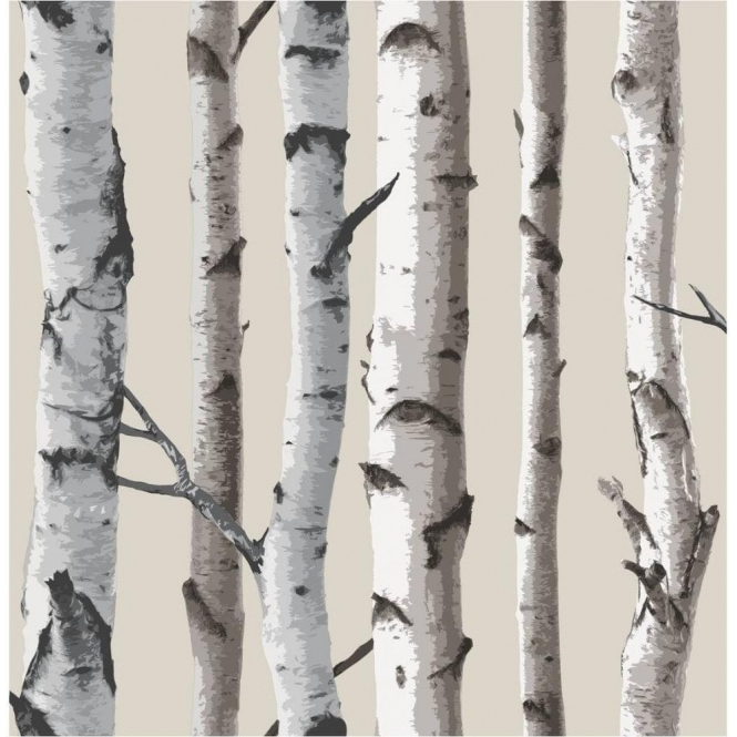 Fine Decor Birch Tree Wallpaper Natural Beige, Cream (FD31051)