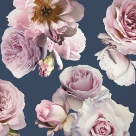 Floral Bloom Rose Wallpaper Navy, Pink