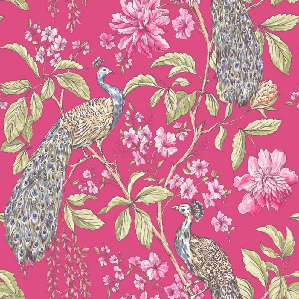Hibiscus Peacock Wallpaper Raspberry 664302 Wallpaper