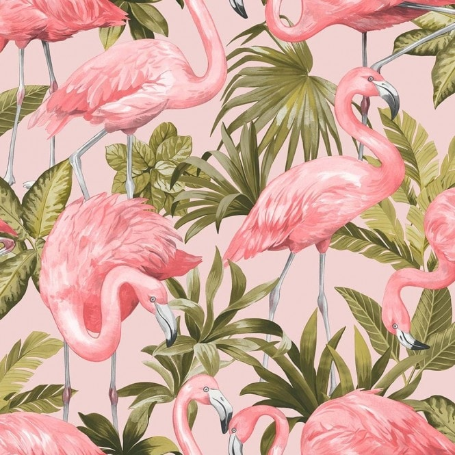 Flamingo Wallpaper Blush Pink (ILW20006)