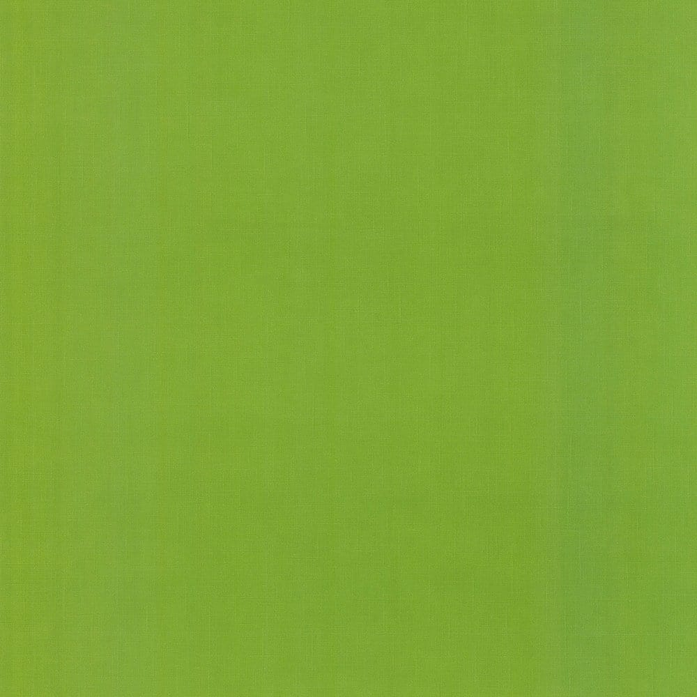 Caselio Jules Plain Wallpaper Grass Green 54967315