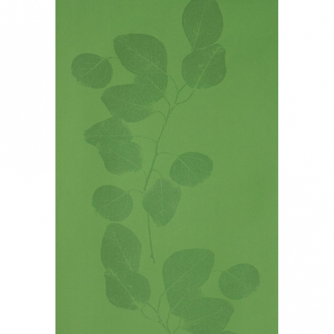 Jocelyn Warner Leaf Hand Screen Printed Leaf Trail Wallpaper Green, Gloss (JWP-206)