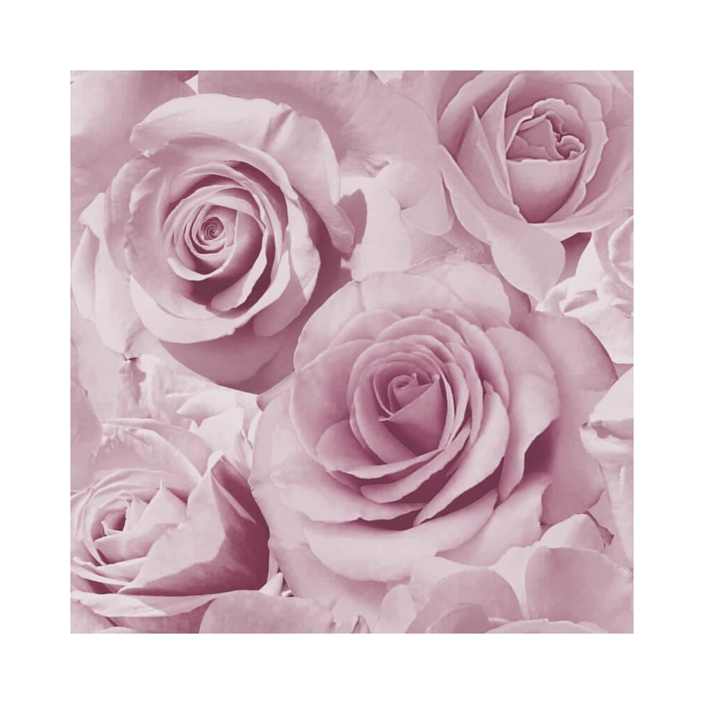 Madison Rose Wallpaper Purple (ILW023)