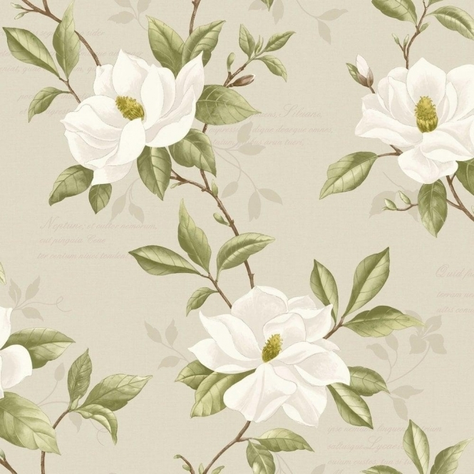 Fine Decor Magnolia Wallpaper Cream / Taupe / Green (FD31323)