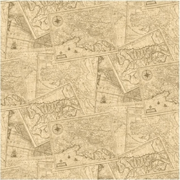 Map Wallpaper Taupe / Brown (601509)