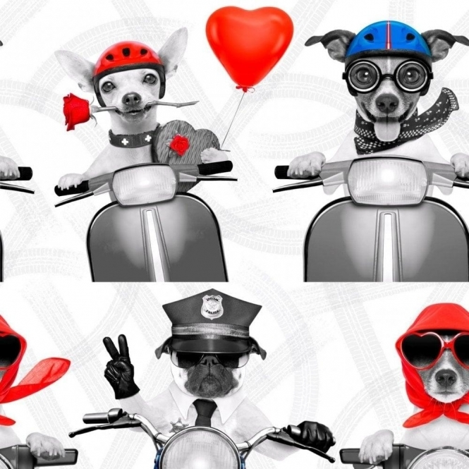 Muriva Biker Dogs Wallpaper Red, White, Blue (102561)