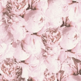 New Studio Romantic Flower Floral Wallpaper Pink, White