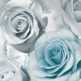 Rose Madison Wallpaper Blue