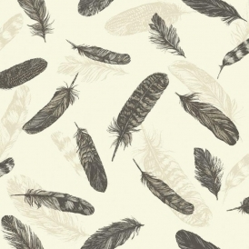 Vintage Plume Feather Wallpaper Black Cream
