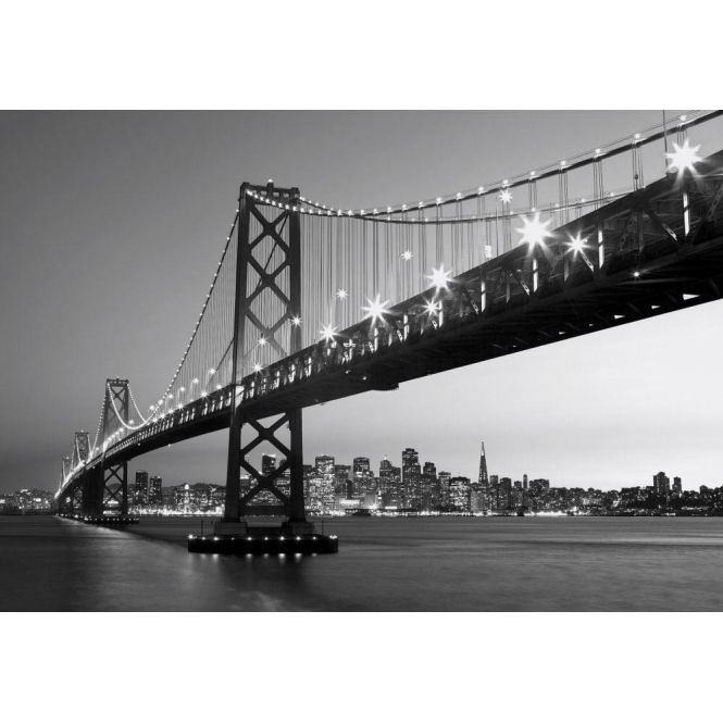 San Francisco Skyline Wall Mural (00134)