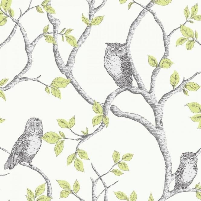Fine Decor Woodland Owls Wallpaper Green, Grey, Cream
