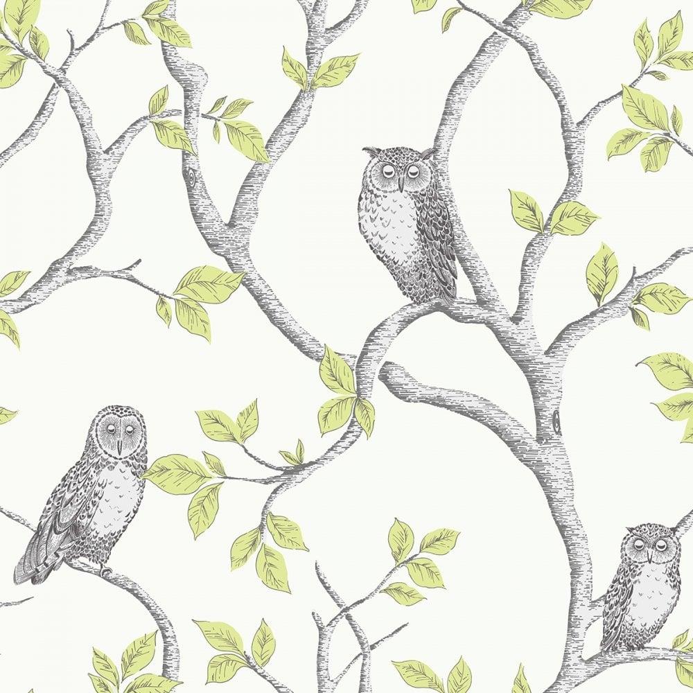 Woodland Owls Wallpaper Green Grey Cream