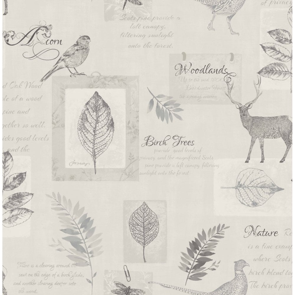 next wallpaper samples free delivery